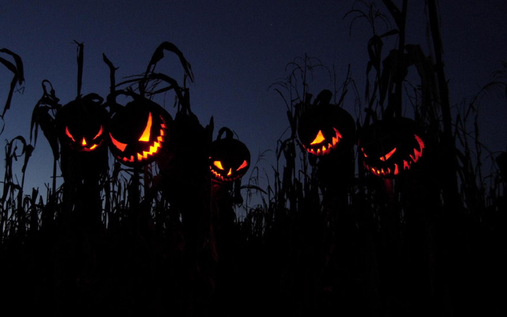 Scarecrow Archives   Into the Cauldron